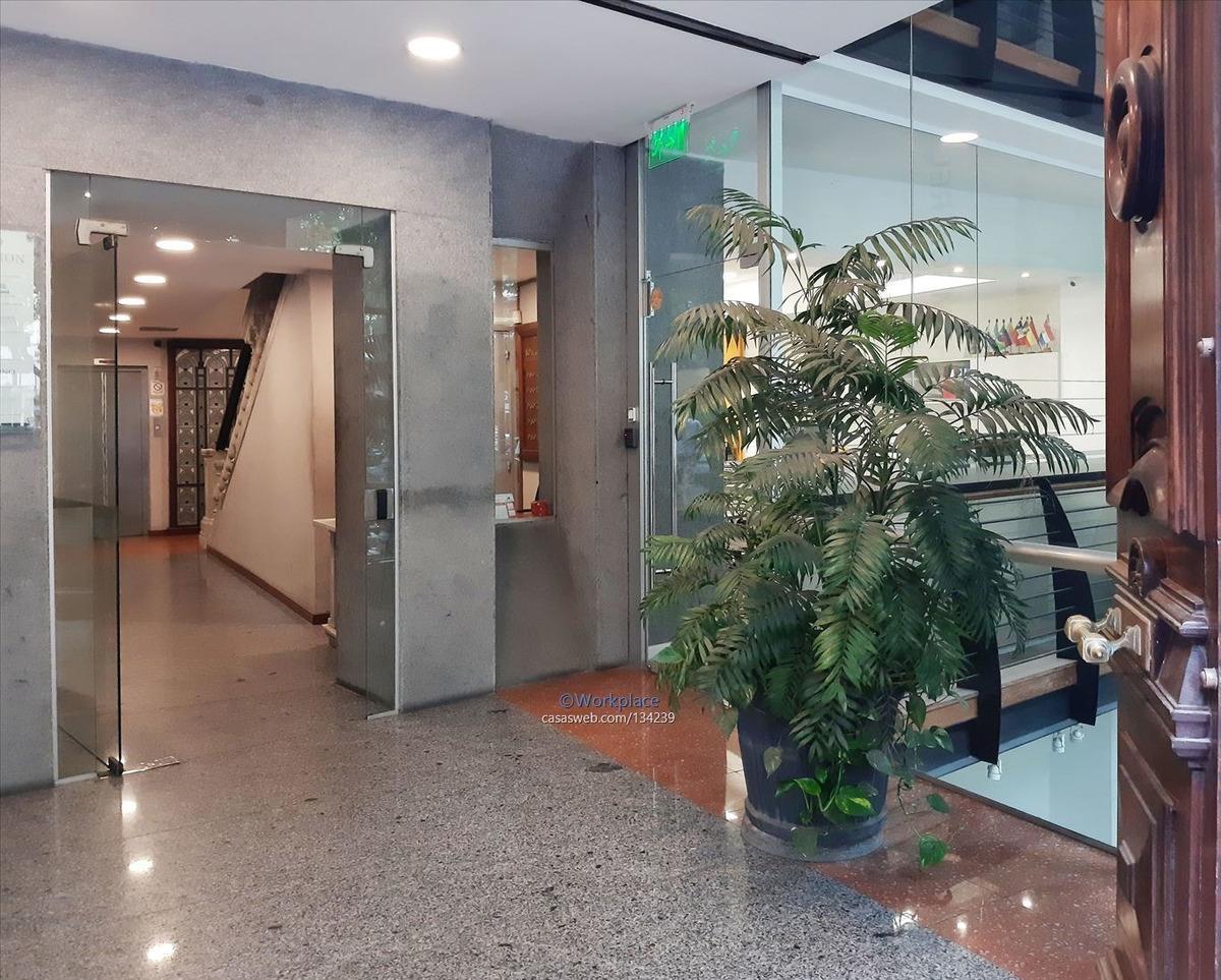 alquiler oficina en cuidad vieja - plaza matríz