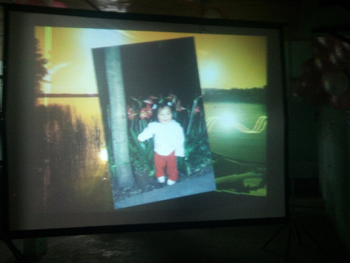alquiler pantalla gig proyector c/son zona sur 4263-3382