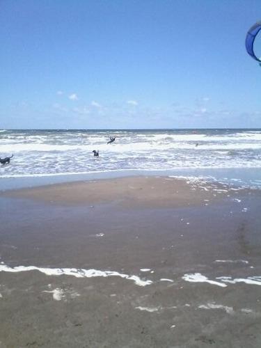 alquiler por temporada - duplex fte al mar - mar del tuyu