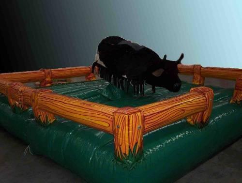 alquiler toro macanico castillo cama algodon musica luces