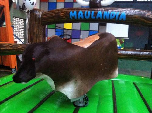 alquiler toro mecánico maulandia