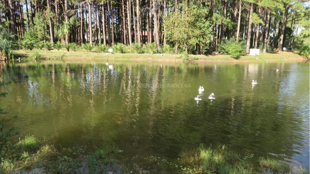alquiler y venta 1 dormitorio haras del lago