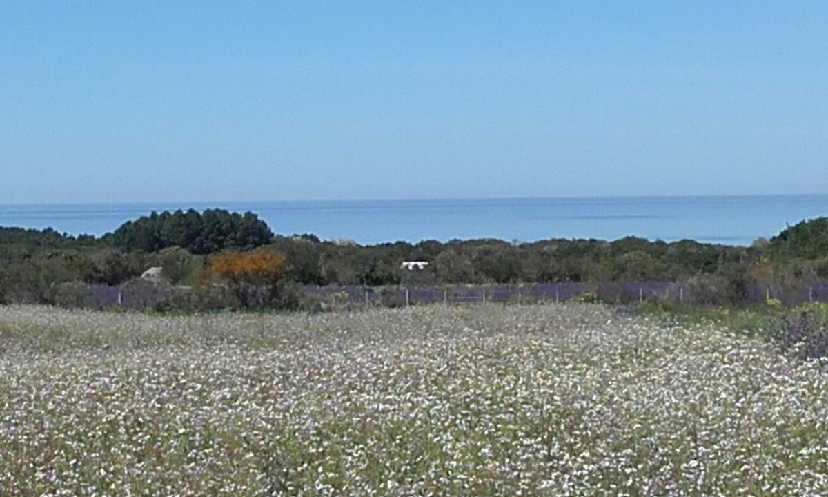 alquilo casa de campo  en playa los pinos fomento colonia