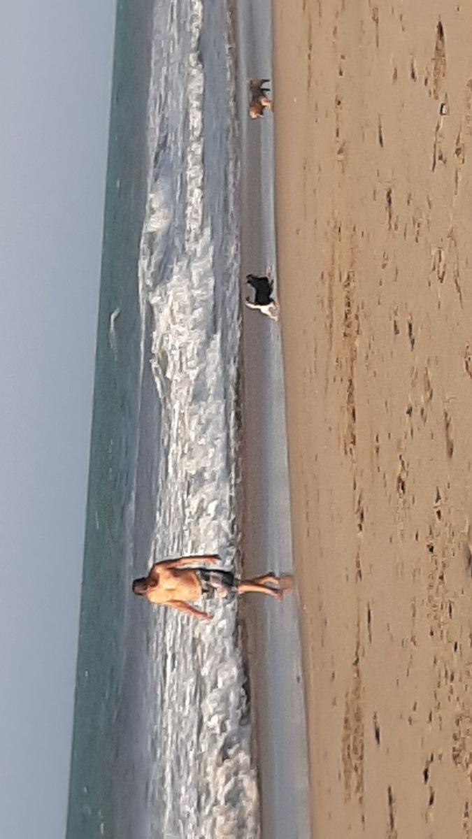 alquilo casa de playa en zorritos tumbes pie de plsya 2 dorm