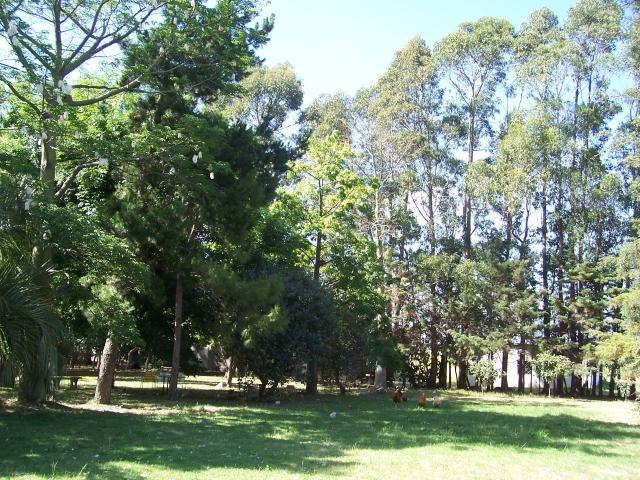 alquilo casa + terreno de 5 hectáreas en la paz cerca ruta 5