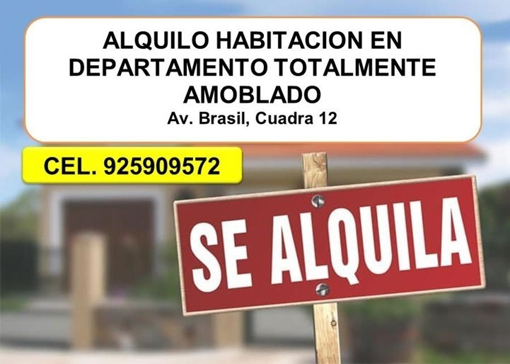alquilo habitacion totalmente amoblado av. brasil, cuadra 12