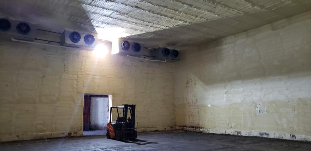 alquilo predio 3 has - galpón 1000 m2 - ingreso san patricio