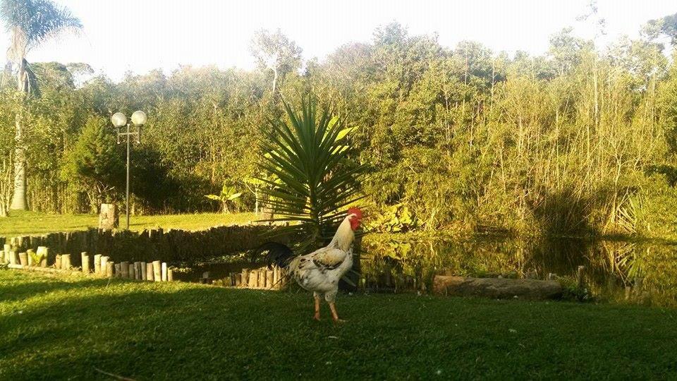 alugo chacara ibiuna para temporada e festas