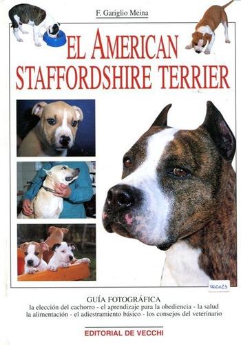 american staffordshire terrier, gariglio meina, vecchi