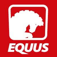 amoladora angular equus 115mm 41/2 pulgadas 800w