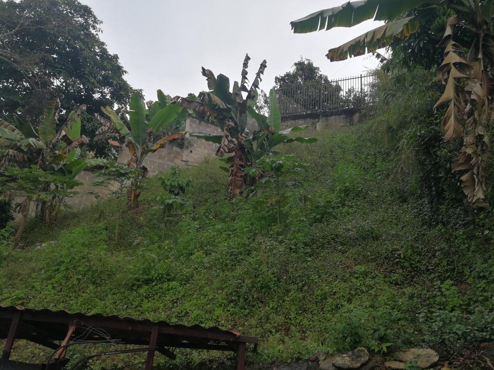 amplia casa en bella urb., 3 h, 2 b, patio, terreno.