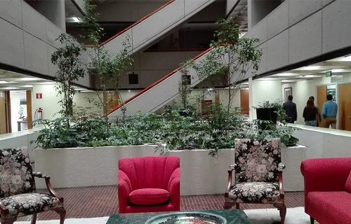 amplia oficina corporativa en renta - periférico sur