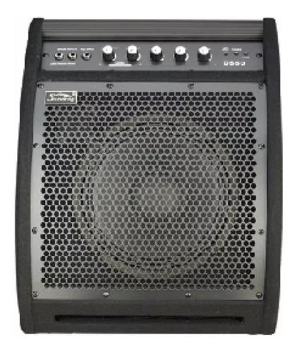 amplificador para bateria electronica profesional 50w garant