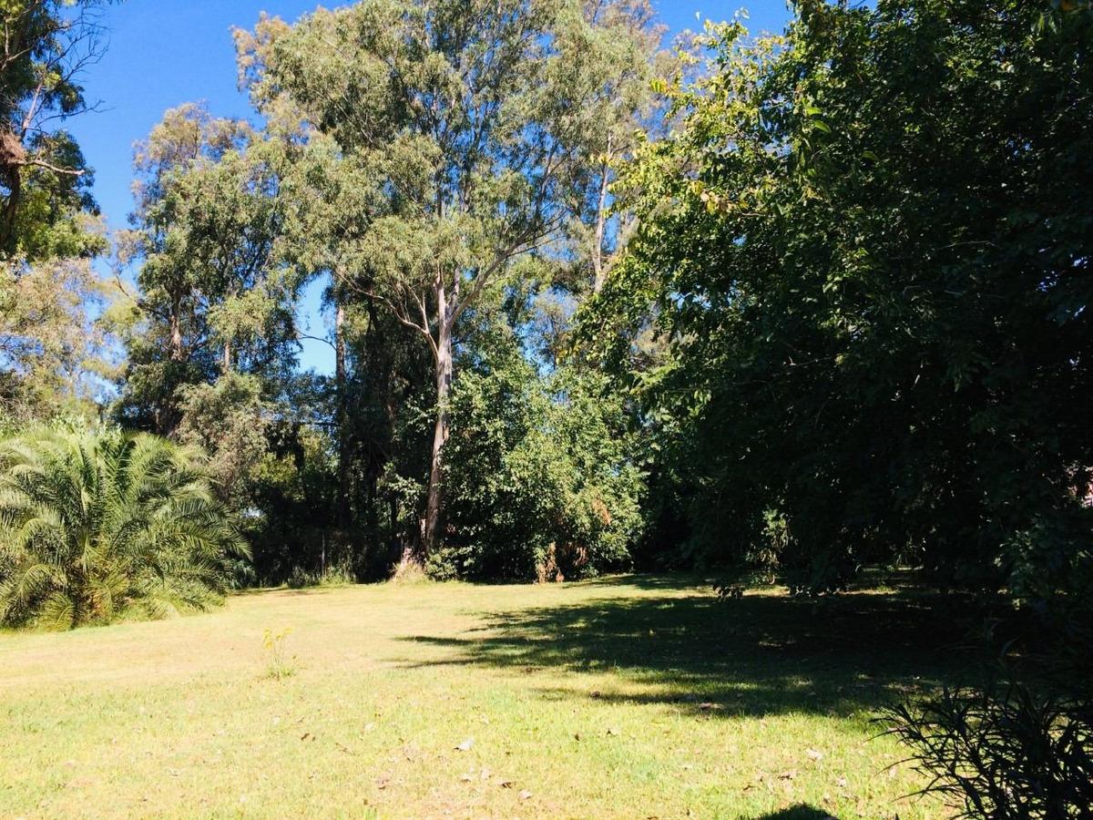amplio lote de 20x70 mts. en guernica, zona de quintas.