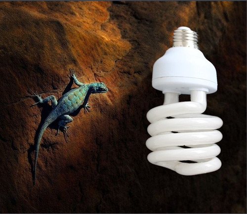 ampolleta ideal para reptiles uva uvb 10.0 de 26 watt