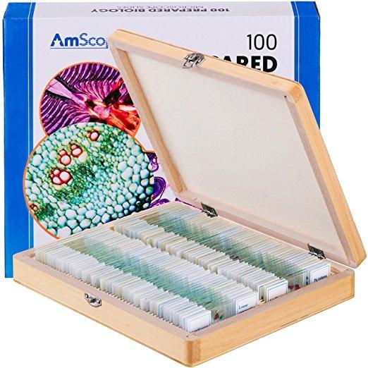 Amscope Ps100d Portaobjetos De Microscopio Preparado Set Par ...