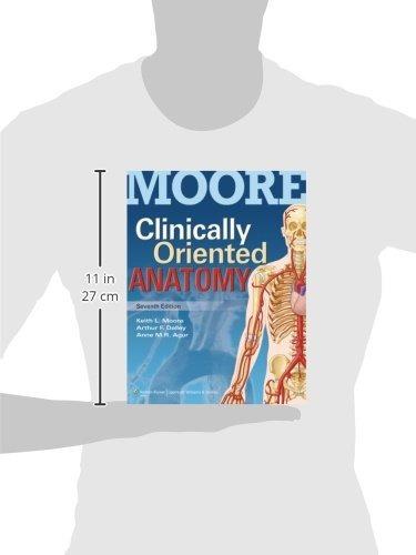 Anatomía 7e De Moore, Orientada Clínicamente, Y Reseña Cl ...