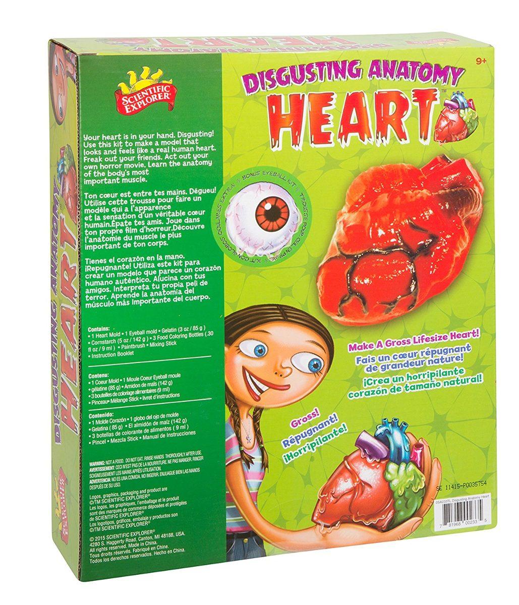 Anatomía Corazón Repugnante - $ 868.00 en Mercado Libre
