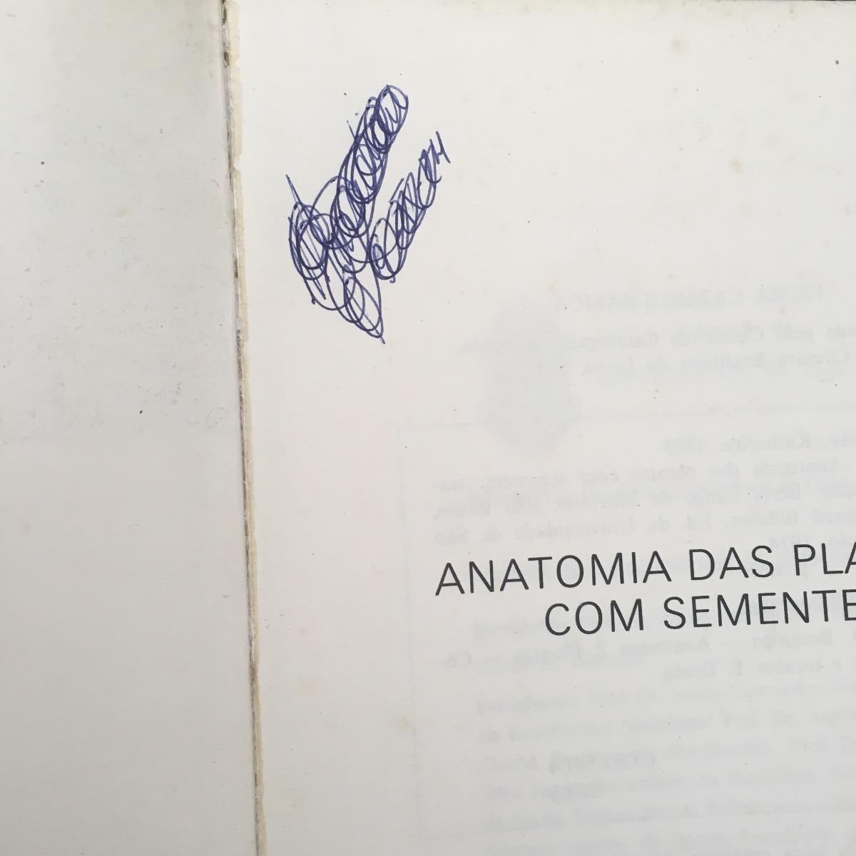Vistoso Anillado Azul Anatomía Pulpo Festooning - Anatomía de Las ...