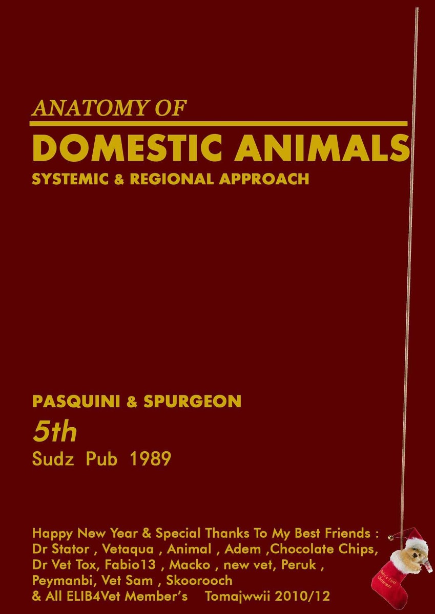 Anatomia De Animales Domesticos, Sistemica Y Regional En Pdf - Bs ...