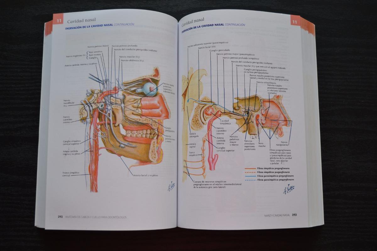 Anatomía De Cabeza Y Cuello Para Odontólogos. Netter - $ 29.000 en ...