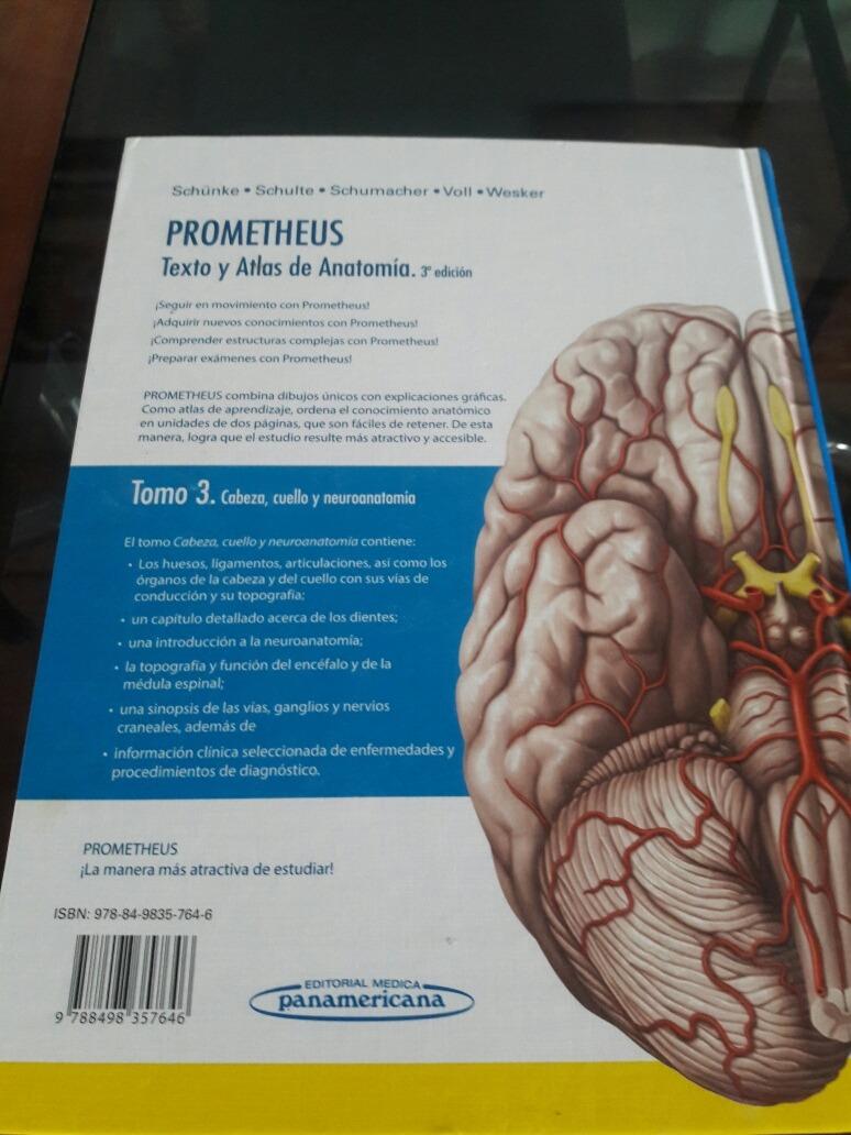 Excepcional Hojas De La Anatomía Del Cerebro Fotos - Imágenes de ...