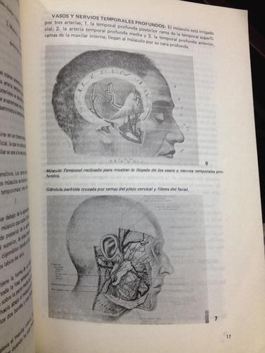 anatomía de cara y cuello - universidad javeriana