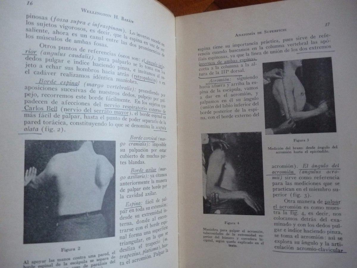 Anatomía De Superficie Del Esqueleto Apendicular - H. Bazan - $ 110 ...