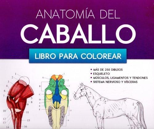 Anatomía Del Caballo Libro Para Colorear! - $ 449.00 en Mercado Libre