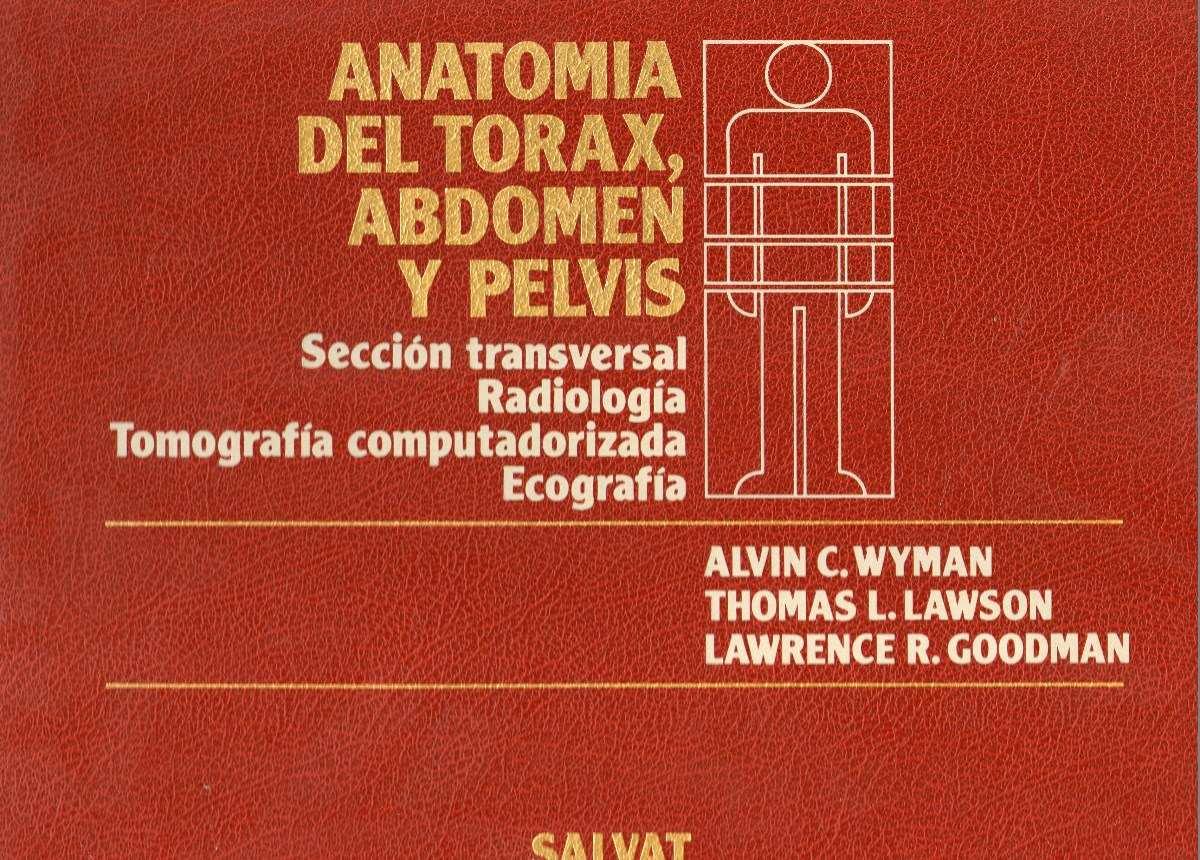 Anatomia Del Torax, Abdomen Y Pelvis - Seccion Transversal - $ 459 ...