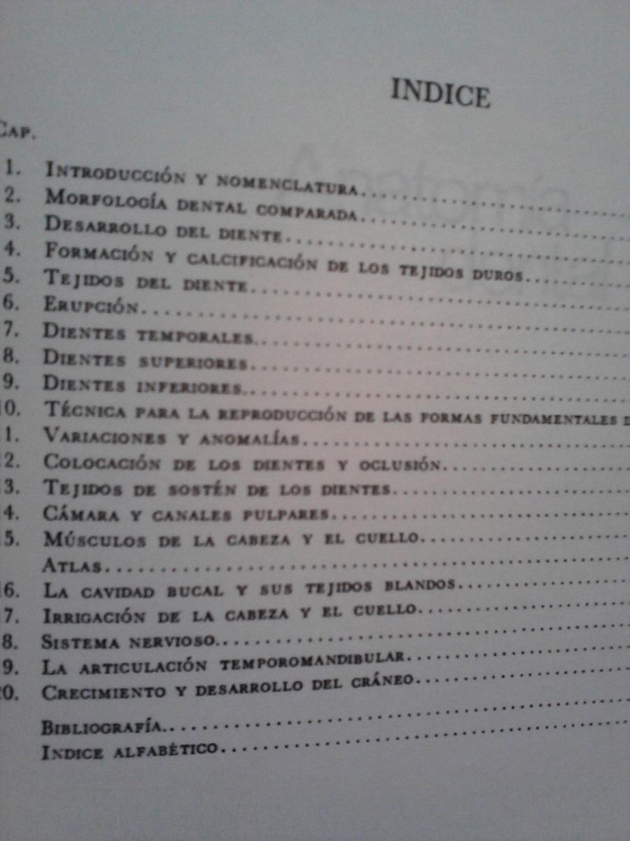 Único Anatomía Dental Comparada Molde - Anatomía de Las Imágenesdel ...