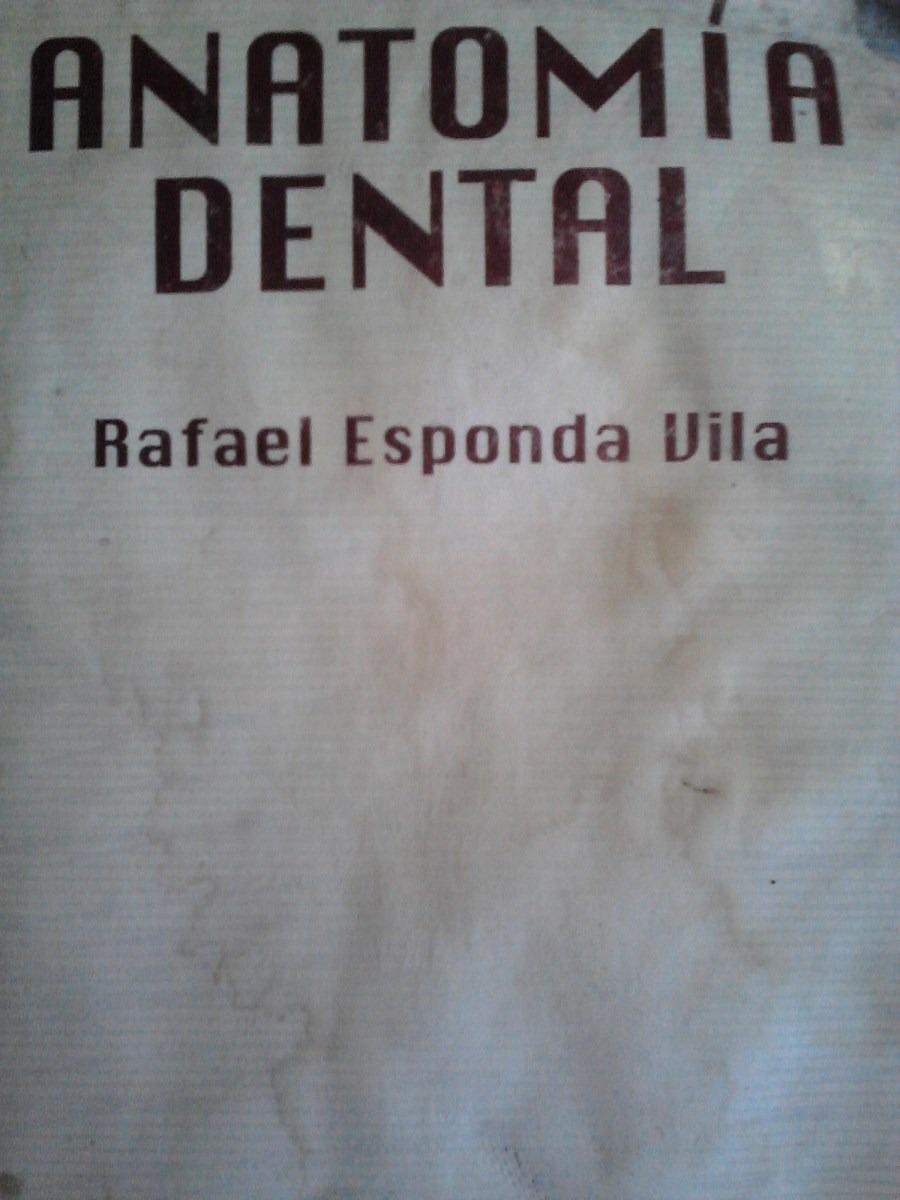 Moderno Anatomía Dental Comparada Festooning - Imágenes de Anatomía ...