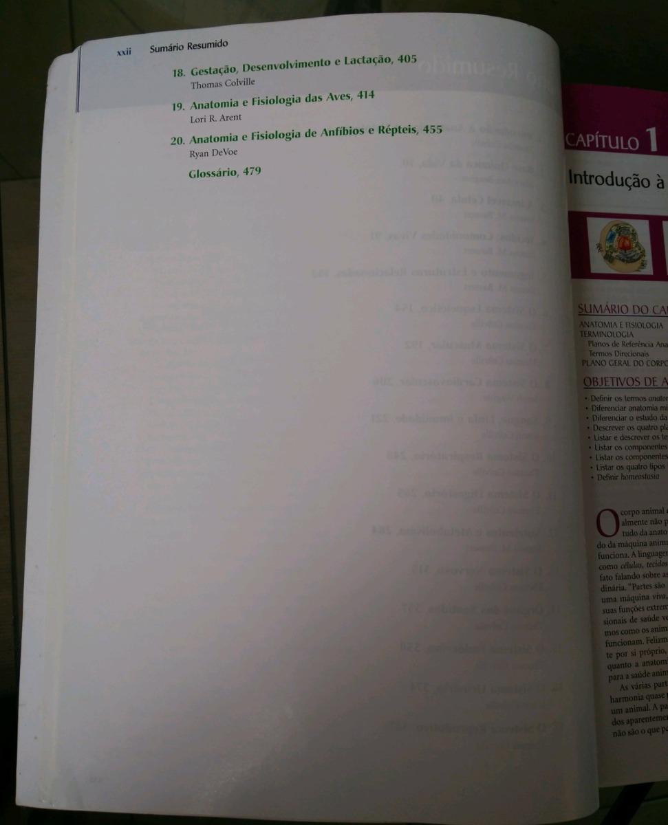 Asombroso Definir La Sección De Anatomía Y Fisiología ...
