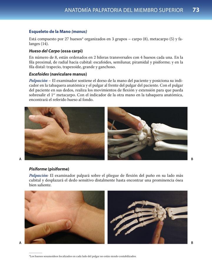 Anatomía Funcional Palpatoria - Souza - $ 1.795,00 en Mercado Libre
