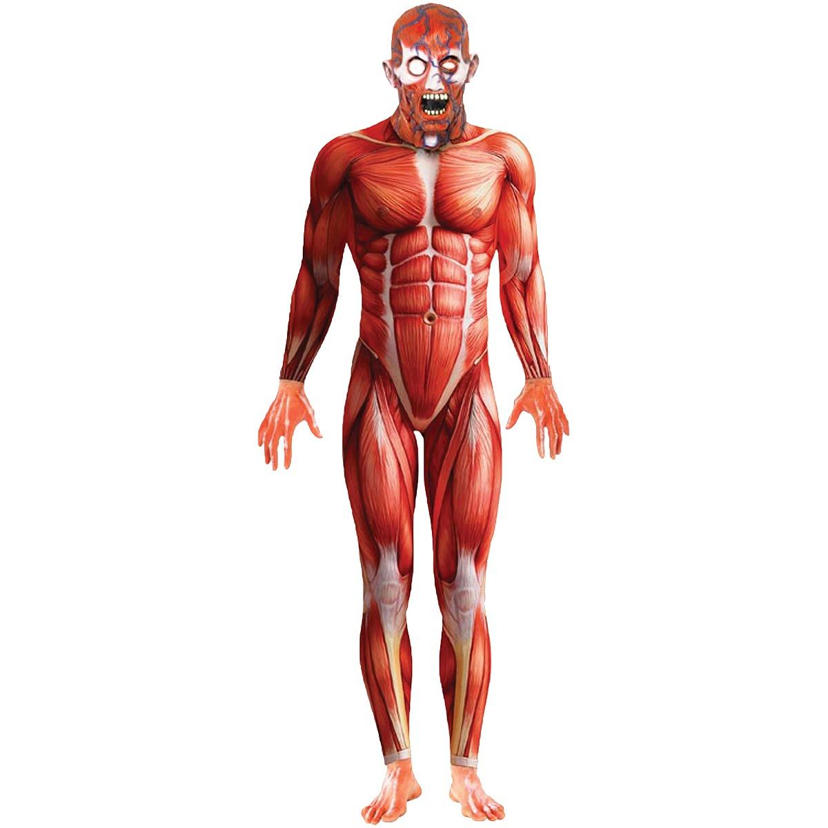 Anatomía Hombre Traje De Halloween Adultos - $ 277.111 en Mercado Libre