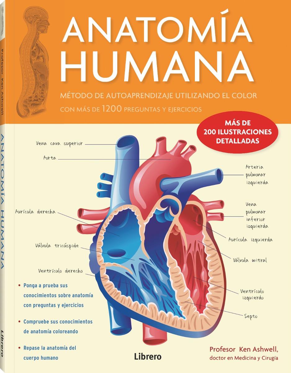 Anatomia Humana Corazon - Ken Ashwell - $ 1.125,00 en Mercado Libre