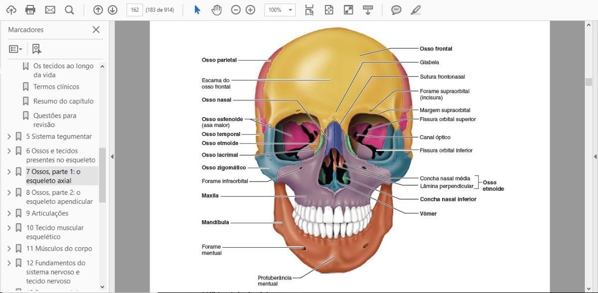 Asombroso Anatomía Y Fisiología Humana Marieb 5ª Edición Imágenes ...