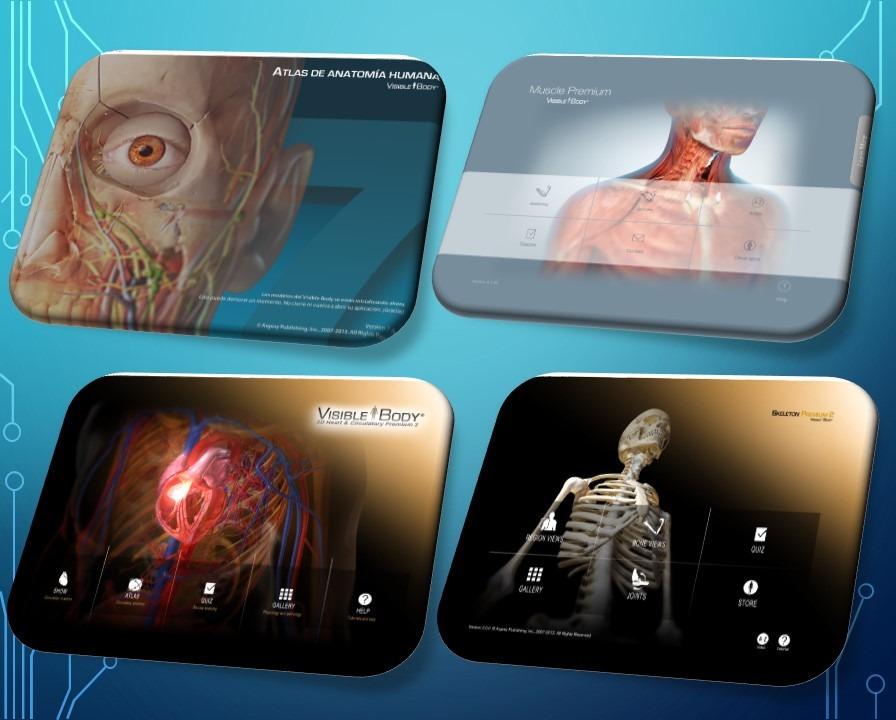 Anatomía Humana En 3d Real Visible Body Pro® - Bs. 16,80 en Mercado ...