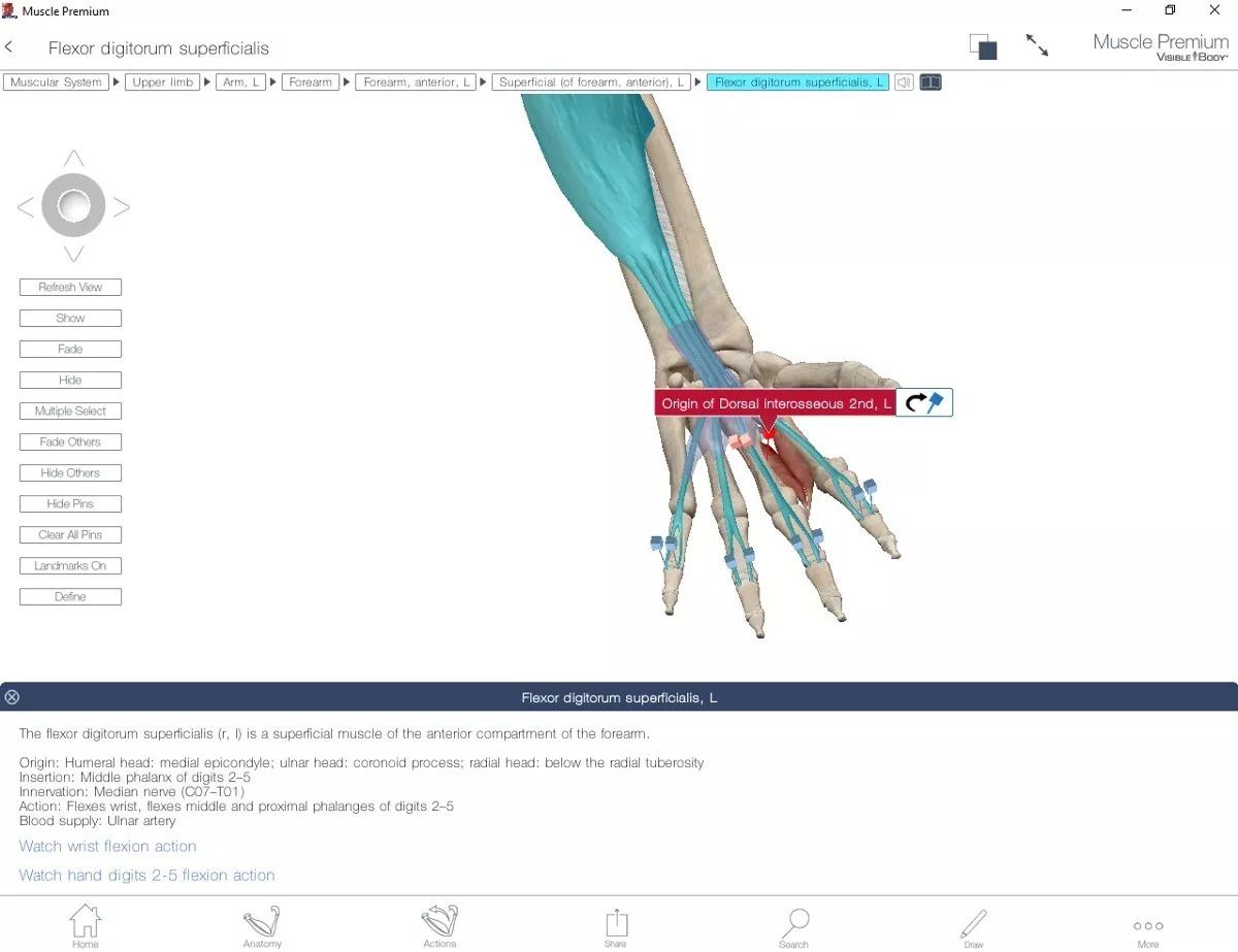 Excepcional Software De La Anatomía Real Regalo - Anatomía de Las ...