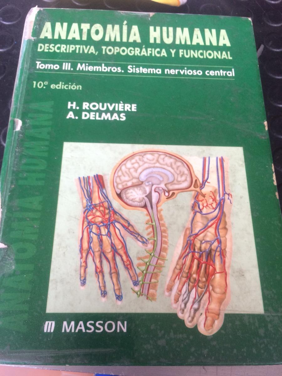 Lujo Anatomía Libre Cresta - Imágenes de Anatomía Humana ...