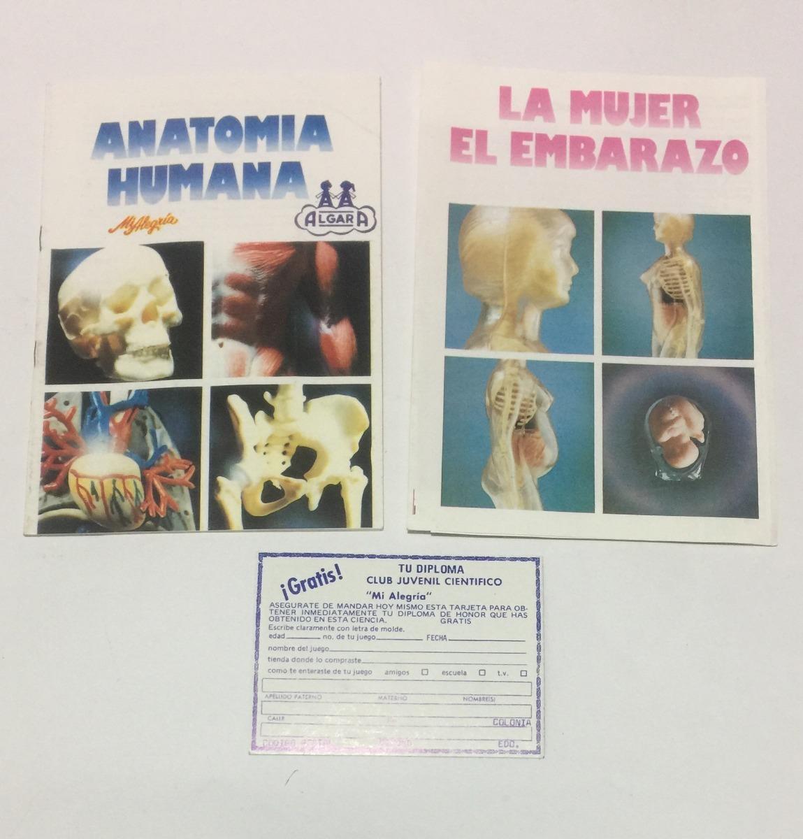 Anatomía Humana La Mujer El Embarazo Mi Alegría Retromex V ...