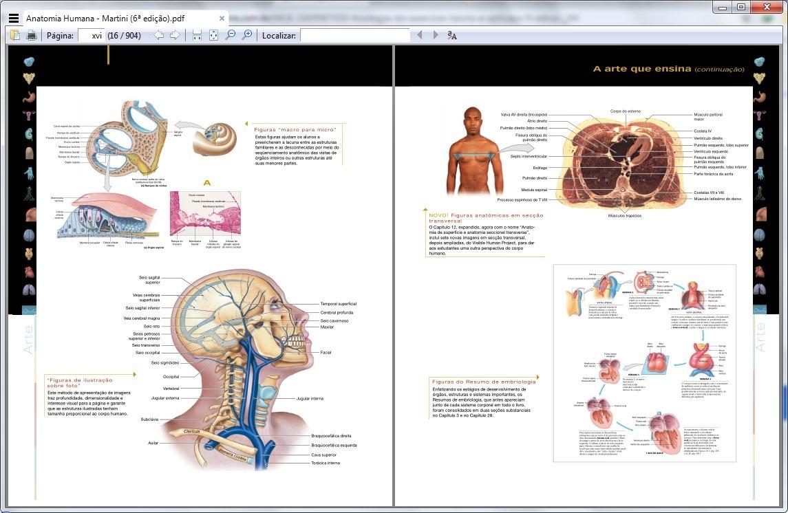 Anatomia Humana Martini 6 Edio Ebook Pdf Original R 2990 Em