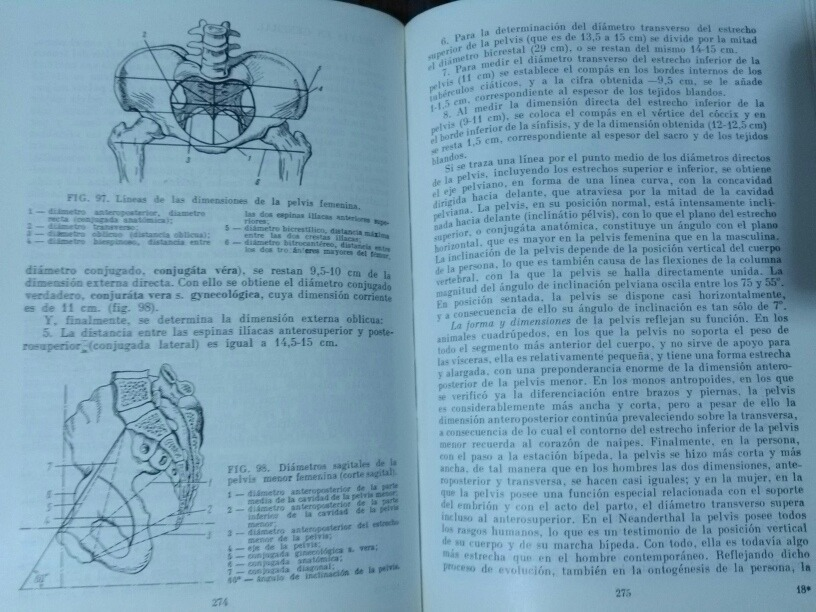 Anatomía Humana - Prives Lisenkov Mir Moscu 2 Tomos - $ 380.00 en ...
