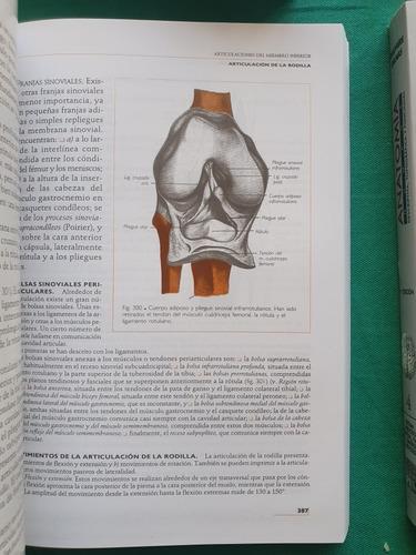 anatomía humana rouviere 11va ed papel revista