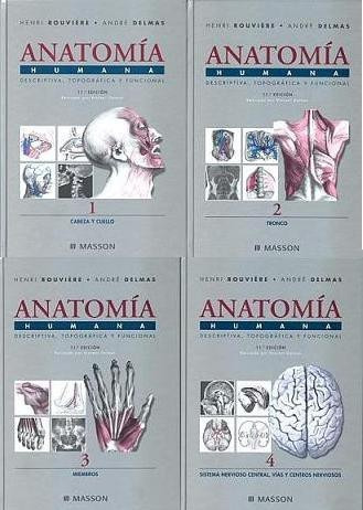 anatomía humana rouviere delmas 11ed 4 tomos digital