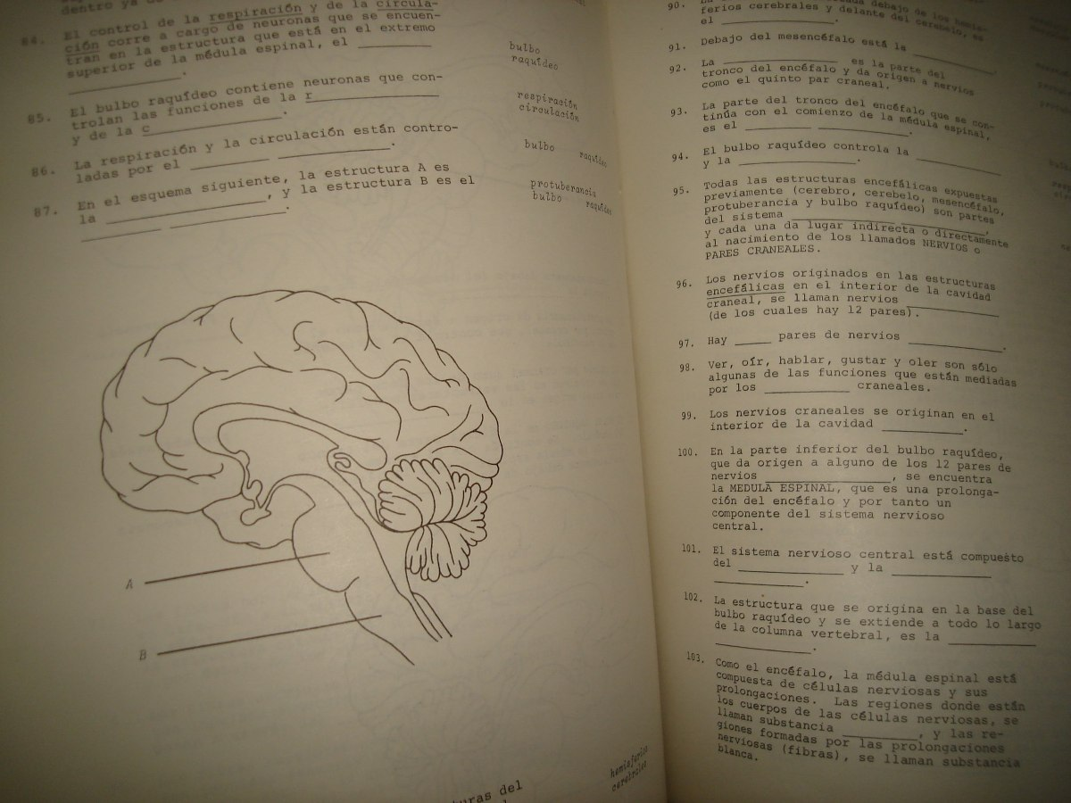 Anatomía Humana, Texto Programado - $ 299.00 en Mercado Libre