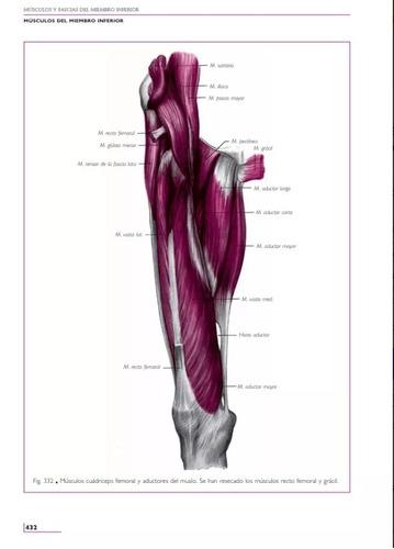 Anatomía Humana. Tomo 3: Miembros, 11va Edición Oferta! - $ 69,90 en ...