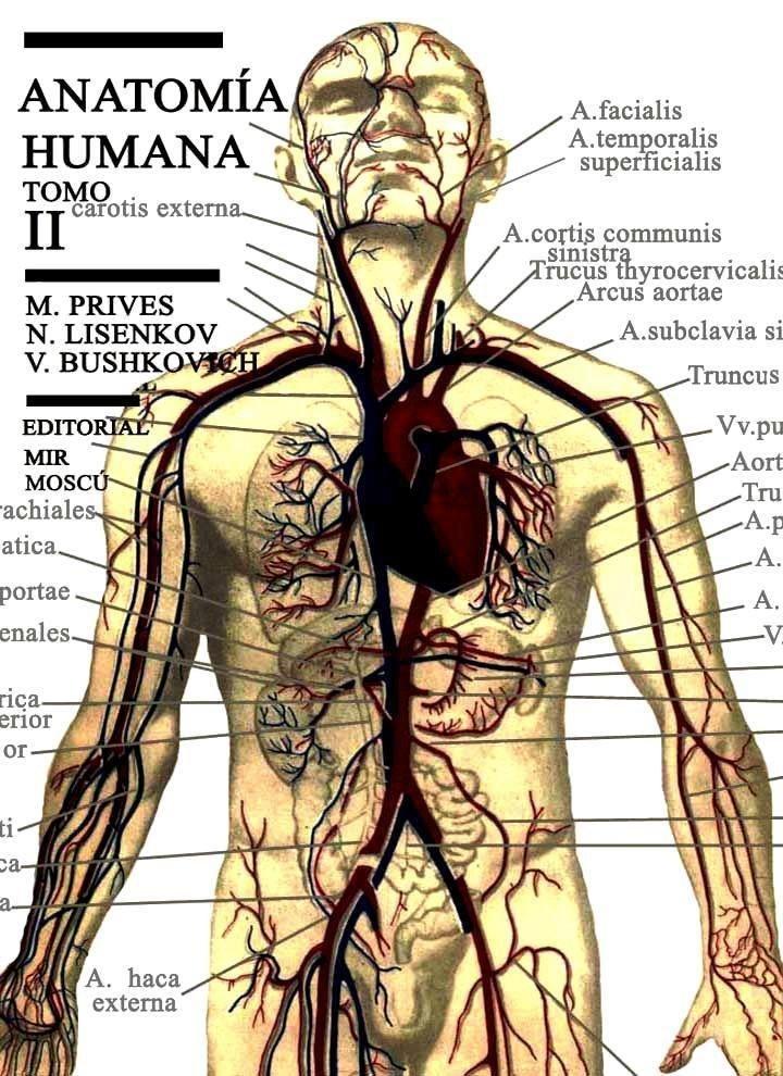 Anatomia Humana Tomo Ii: Esplacnologia Organos - $ 95.00 en Mercado ...