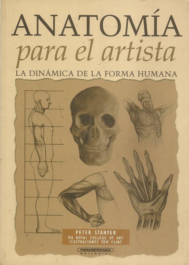 Asombroso Anatomía Para Artistas Viñeta - Imágenes de Anatomía ...