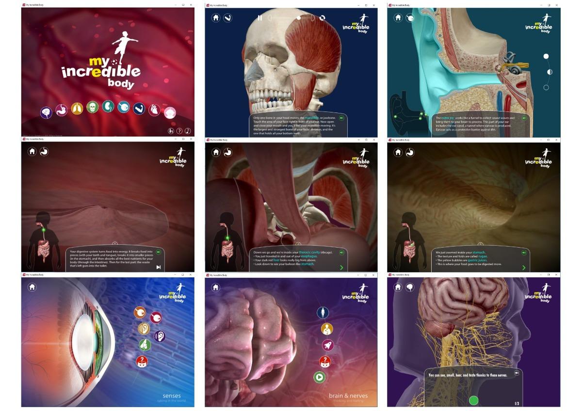 Anatomía Para Los Niños 3d My Incredible Body Para Pc En Dvd - Bs ...